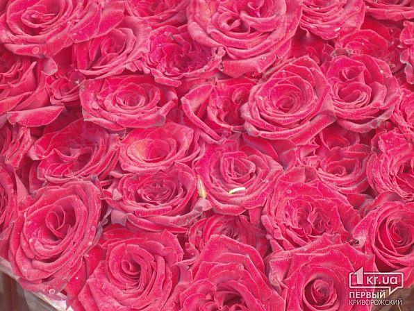 меня 1 роза сколько стоит низкие оптовые розничные