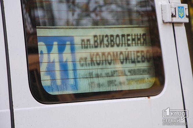 Вмассовом ДТП наДнепропетровщине пострадали 9 человек