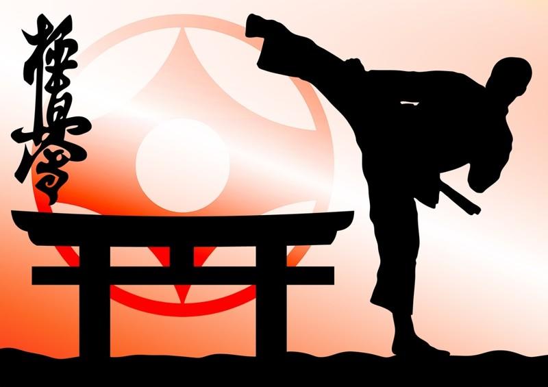Картинка с днем рождения тренера карате