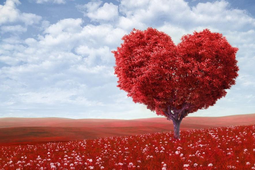 Как отпраздновать День Влюбленных: история, традиции, идеи подарков