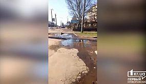 В Кривом Роге бьет родник чудесной воды   1kr.ua