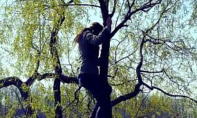 Невідомий Кривбас: Вічнозелений оазис, останній із Могікан, техногенний заповідник