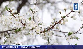 Весна в Кривом Роге