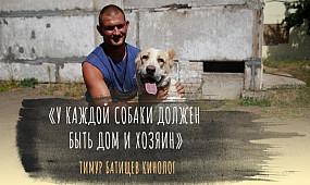 Общество Кривой Рог: как решается проблема с бродячими животными | 1kr.ua