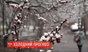 Синоптики прогнозують сильні заморозки напередодні Великодня