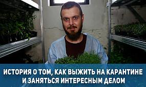 Криворожский диджей начал выращивать микрогрин во время карантина |1kr.ua