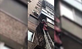 Кривий Ріг: рятувальники звільнили голуба з пастки