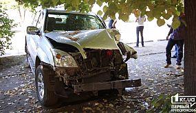 Происшествия Кривой Рог: водитель Toyota вылетел в дерево, не уступи дорогу Ладе | 1kr.ua