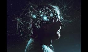 Правда ли, что мозг работает всего на 10%?