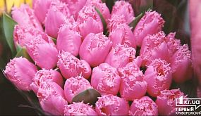 Общество Кривой Рог: во сколько обойдется весенний букет цветов | 1kr.ua