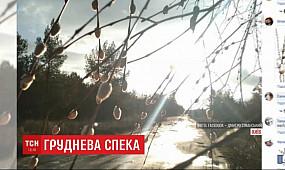 Груднева спека: синоптики обіцяють в Україні майже рекордне потепління