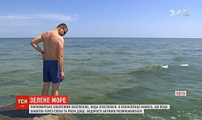 Вода на Чорному морі раптово згустилася, як кисіль, та стала смарагдовою