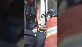 У Кривому Розі співробітники Служби порятунку «101» врятували хлопчика