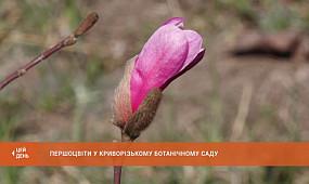 Першоцвіти у Криворізькому ботанічному саду