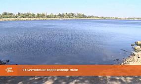 Карачунівське водосховище міліє. Екологи б'ють на сполох