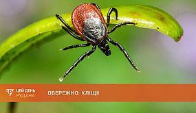 Обережно, кліщі: лікарі попереджають про сезонну активність небезпечних комах