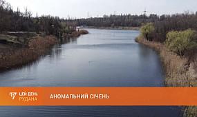 Аномальний січень: початок року видасться незвично теплим для України