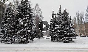 В Кривом Роге выпал снег